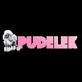 Nowa odsłona serwisu Pudelek