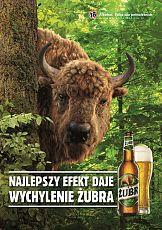 Rusza nowa kampania reklamowa piwa Żubr
