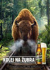 """Żubr powraca do korzeni w kampanii """"Kolej na Żubra"""""""