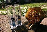 Aqua Carpatica zdobywa Złotego Lwa na Cannes Lions
