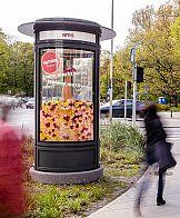 Słupy reklamowe AMS wypełnione kwiatami w kampanii TK Maxx