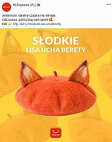 """""""Słodkie lisa ucha berety"""" – unikalne cechy marki w  komunikacji Aliexpress"""