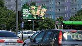 B-life Botanicals z niecodzienną kampanią outdoorową