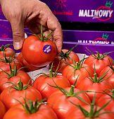 Malinowy Król: CU wspiera debiut nowej marki pomidorów