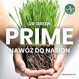 Mediacom odpowiada za nową kampanię produktową Dr Green