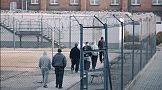 "Sukces serii ""Dożywotniacy"" telewizji Crime + Investigation Polsat"