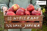 """Stowarzyszenie Sady Grójeckie: """"Wybieram polskie jabłka"""""""
