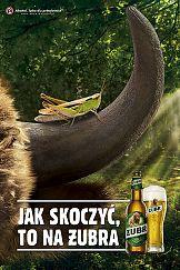 Jak skoczyć, to na Żubra – nowy spot oraz letnia aktywacja marki