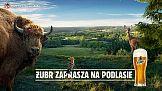 """""""Żubr zaprasza na Podlasie"""" w nowej kampanii marki"""