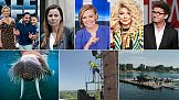 TVN wygrywa wyścig ramówek w pierwszym tygodniu września