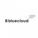 Agencja Bluecloud Interactive chce wspierać Klientów