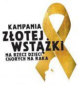Pierwsza w Polsce Kampania Złotej Wstążki zakończona