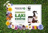 Botanica by Air Wick i WWF chronią łąki kwietne