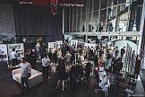 Separator - czerwcowy Festiwal Inicjatyw Kreatywnych
