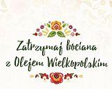 Zatrzymaj bociana z Wielkopolskim: kampania marki Olej Wielkopolski