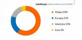 41 proc. ruchu w polskim Internecie pochodzi spoza Polski