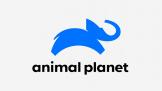 Animal Planet z nową identyfikacją wizualną