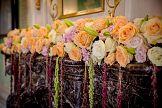 Sigma International promuje róże Avalanche+