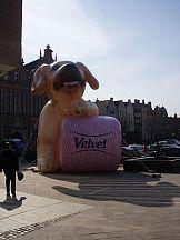 Udana kampania Velvetu dla Kimberly-Clark