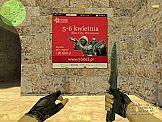 Pierwsza polska reklama na serwerach Counter-Strike