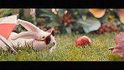 tytulMnóżcie się jak króliki: Ministerstwo Zdrowia promuje prokreację